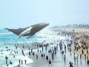 Magic Leap: el futuro de la tecnología