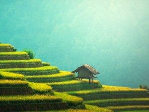 China: 10 razones por las que viajar al país asiático