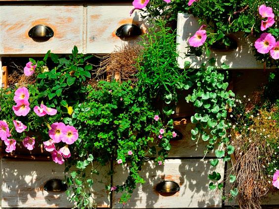 Consejos para sacarle el mayor provecho a tu jardín